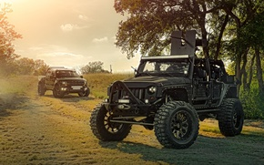 Picture Ford, Nature, Cars, Front, Wrangler, Jeep, Off Road, F150, FullMetalGunner