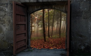 Picture autumn, forest, trees, nature, wall, gate, door, wall, forest, Nature, trees, autumn, fall, doors