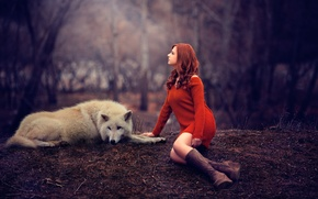 Picture girl, wolf, legs, redhead, sweater, Melis