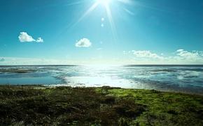 Picture sea, beach, the sun