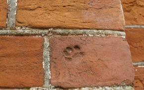 Picture brick, brick wall, red brick