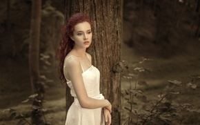 Wallpaper girl, dress, beautiful, one, in white, bokeh, in the woods, the tree