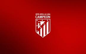 Picture wallpaper, football, Spain, Champions, La Liga, winner, Atletico Madrid, Campeon