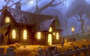 Wallpaper light, deviantart, Halloween, pumpkin, unidcolor, a witch? =), house, forest, cat