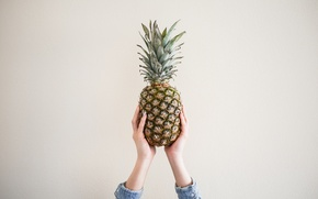 Picture wall, hands, pineapple