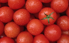 Picture food, red, tomatoes, tomatoes, delicious, clean