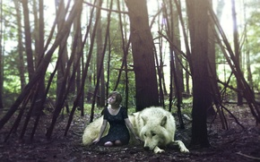 Picture forest, girl, wolf