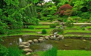 Picture greens, grass, trees, pond, stones, France, garden, the bushes, branch.leaves, Albert Kahn Japanese gardens