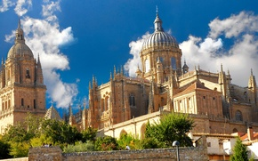 Picture cathedral, Gothic, Spain, architecture, Spain, Salamanca, Salamanca, Spain, Cathedral, the city, The Cathedral Of Salamanca, ...