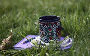 Picture greens, grass, water, blue, necklace, album, Cup, beads, pencil, Ukraine, pearl