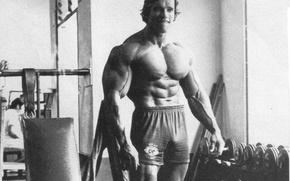 Picture Arnold Schwarzenegger, bodybuilding, bodybuilding, Bodybuilding