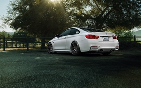 Picture car, BMW, 1013mm, Forgestar
