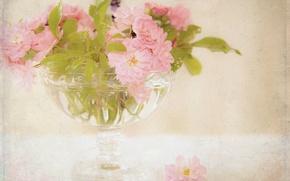 Picture flowers, roses, bouquet, vase, pink, tea