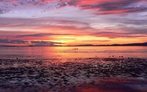 Picture sea, Sunset, horizon