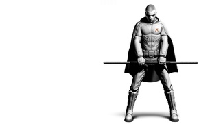 Picture costume, Robin, Batman arkham city, dibo