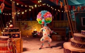 Picture Clown, Zebra, Hairstyle, Spot, Laughter, Madagascar, Madagascar, Cartoon, Martin, Circus