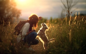 Picture girl, light, dog