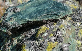 Picture stones, moss, Russia, Altay