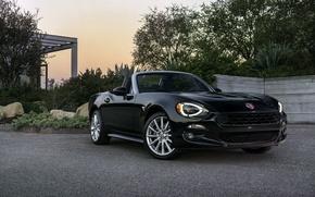 Picture black, Roadster, Black, Fiat, Spider, Fiat, 124
