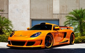 Wallpaper flowers, front view, porsche, wall, drives, Porsche, black, orange, carrera gt, orange, Carrera GT