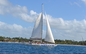Picture Yacht, jungle, The Caribbean sea