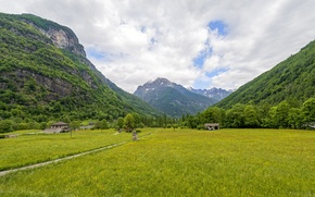 Picture grass, clouds, trees, mountains, Switzerland, valley, gorge, Canton Ticino, Sonogno
