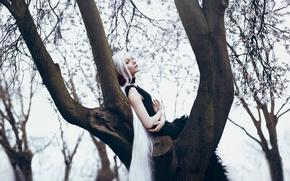 Picture girl, tree, white hair, long, Bella Kotak