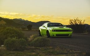 Picture green, tuning, Dodge Challenger, tuning, muscle car, low, liberty walk