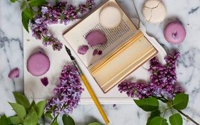 Picture style, pen, book, still life, lilac, twigs, pasta