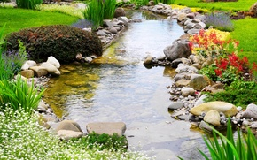 Picture greens, grass, flowers, Park, stream, stones, lawn