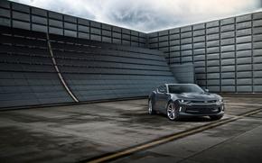 Picture Chevrolet, Camaro, Chevrolet 2016, Camaro 2016, 2016 Chevrolet Camaro RS