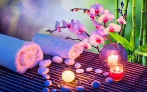 Picture flower, stones, candle, towel, bamboo, Orchid, Spa