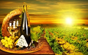 Picture the sun, wine, white, bottle, cheese, glasses, grapes, vineyard, olives, Dor blue