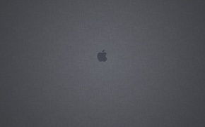 Picture Apple, Apple, Grey background, Mac os