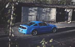 Picture Mustang, Ford, Blue, Ass, Ford, Muscle, Mustang, Car, Blue, 5.0