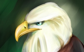 Picture eagle, art, art, eagle