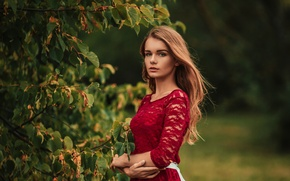 Picture leaves, girl, branches, tree, green, sweetheart, model, dress, light, red, brown hair, beautiful, the beauty, …