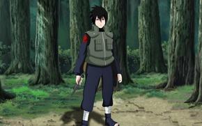 Picture game, Naruto, anime, man, boy, sharingan, ninja, asian, pose, manga, Uchiha Sasuke, shinobi, japanese, Naruto …