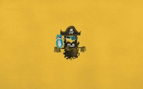 Wallpaper bird, skull, minimalism, hat, pirate, parrot, bones, headband, Blackbeard, gold tooth