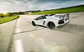 Picture Roadster, Lamborghini, LP700-4, Aventador, LB834, Rear, Novitec Torado, Skid