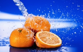 Picture water, drops, macro, squirt, freshness, oranges, citrus