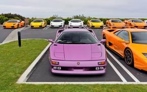 Picture Lamborghini, Parking, Gallardo, Murcielago, supercars, Diablo, Aventador
