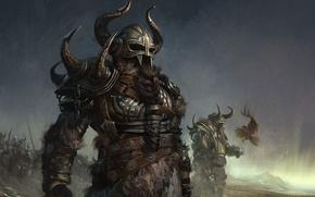 Wallpaper warrior, horns, helmet, braid, beard