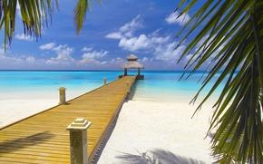 Picture surface, Bahamas, bridge, landscapes, road, shore, coast, beach, exotic, leaves, sea, landscape