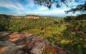 Picture forest, mountains, branches, panorama, gorge, Kentucky, Slade, Chimney Top Rock, Red River Gorge, Daniel Boone …