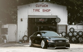 Picture Audi, Auto, The fence, Trees, Tuning, Machine, Landing, Service, Tires