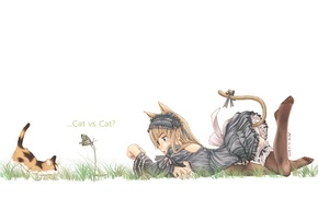 Wallpaper girl, mood, neko, butterfly, kitty