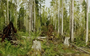 Picture trees, thickets, picture, painting, Shishkin, Pine forest