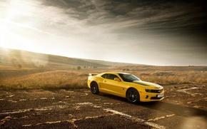 Wallpaper Chevrolet, Muscle, Camaro, Car, Sun, Yellow, Bumblebee, Edition