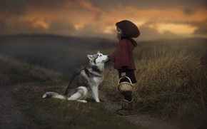 Picture nature, dog, friendship, girl, basket, friends, husky